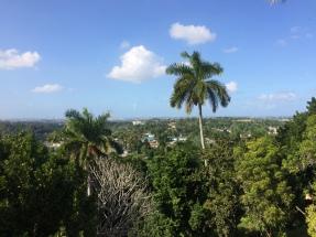 View from Hemingway's villa